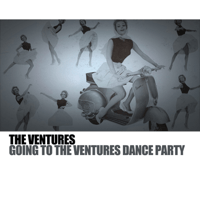Theme From 'Come September' The Ventures