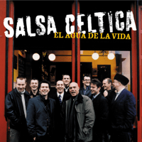 Maestro Salsa Celtica MP3