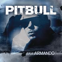 Echa Pa'lla (Maños Pa'rriba) Pitbull