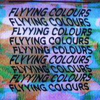Wavygravy Flyying Colours MP3