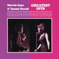 Ain't No Mountain High Enough Marvin Gaye & Tammi Terrell MP3
