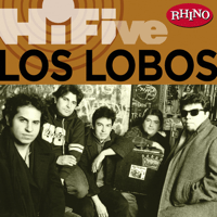 Come On, Let's Go Los Lobos