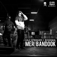 Meri Bandook (feat. Bohemia) Haji Springer song