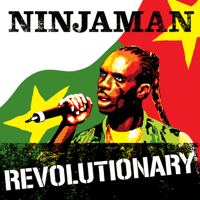 Revolutionary A.K.A Put It On Ninjaman