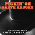 Free Download Pickin' On Series That Summer Mp3
