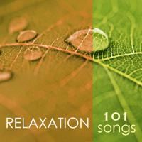 Sleep Therapy Spa Music Relaxation Meditation