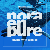 Diving with Whales Nora En Pure MP3