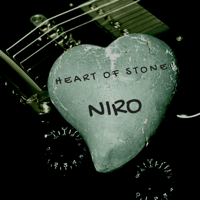 Shadow of My Life Niro
