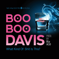 Blues on My Mind Boo Boo Davis
