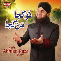 Tu Kuja Man Kuja Ahmed Raza Qadri