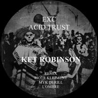 Acid Trust (Piotr Klejment Remix) Ket Robinson MP3