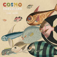 Come Along Cosmo Sheldrake