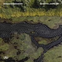 Walk Away Sonido Berzerk & Malou Mørkeberg MP3
