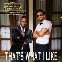 That's What I Like (feat. LaVance Colley & Lee Howard) Scott Bradlee's Postmodern Jukebox MP3