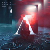 Access Martin Garrix MP3