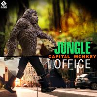 Jungle Office Capital Monkey
