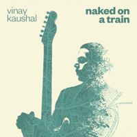 Naked on a Train Vinay Kaushal