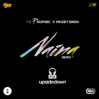 Naina (Upsidedown Remix) [feat. Mickey Singh & Upsidedown] The PropheC