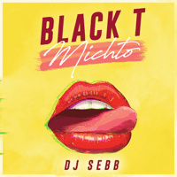 Michto DJ Seb.B & Black T