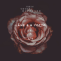 Free Download Lane 8 & Yotto I / Y Mp3