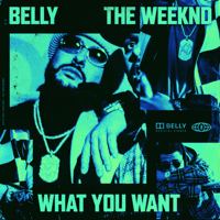 What You Want (feat. The Weeknd) Belly MP3