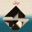 Free Download Wild Nothing Letting Go Mp3