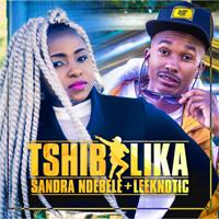 Tshibilika (feat. Leeknotic) Sandra Ndebele