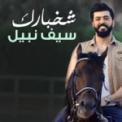 Free Download Saif Nabeel Shekhbarek Mp3