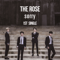 Sorry The Rose MP3
