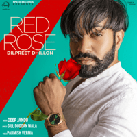 Red Rose Dilpreet Dhillon
