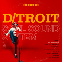 Soul Sound System D/troit song