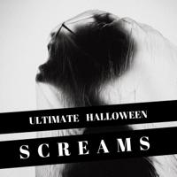 Creepy Sounds Halloween Horror Sounds & Drakula MP3
