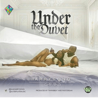 Under the Duvet Harrysong MP3