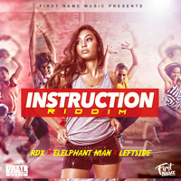 Instruction Riddim Troy McClean