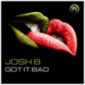 Free Download Josh B Got It Bad Mp3