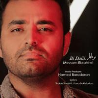 Bi Dalil Meysam Ebrahimi