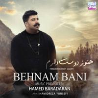 Hanooz Dooset Daram Behnam Bani