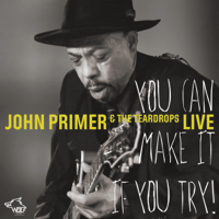 Love in Vain John Primer song