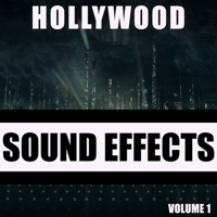 Frog Hollywood Sound Effects Library MP3