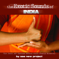 I Love India See New Project MP3