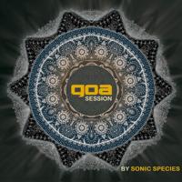 Alien Technology (Sinerider vs. Sonic Species) Sinerider & Sonic Species MP3