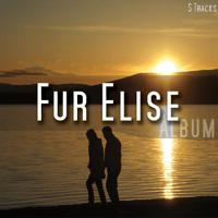 Moonlight Sonata Fur Elise MP3