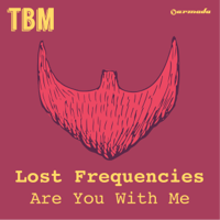 Are You With Me (Radio Edit) Lost Frequencies