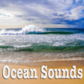 Free Download Nature Sounds Ocean With Birds Mp3