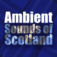 Local Hero (Ambient Mix) The Munros