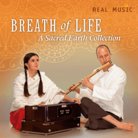 Beautiful Sacred Earth MP3