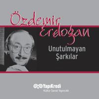 Pervane Ozdemir Erdogan