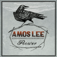 Flower Amos Lee song