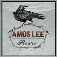 Flower Amos Lee