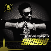 What's Love (feat. Akon) Shaggy